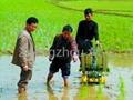 Manual rice paddy transplanter machine