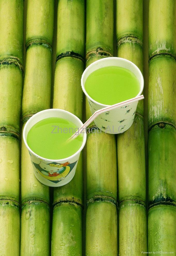 Sugar cane mill sugar cane extractor sugar cane juicer 1