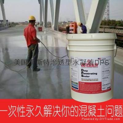 美国原装进口永凝液DPS 1