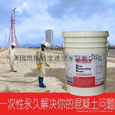 美国原装进口永凝液DPS 2