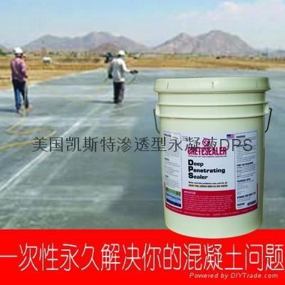 美国原装进口永凝液DPS 3