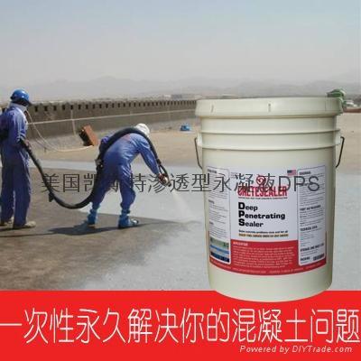 美国原装进口永凝液DPS 5