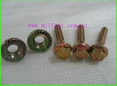 Hex Flange Nuts (DIN 6923)