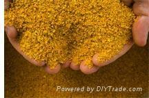 Corn Gluten Meal 60% Fee