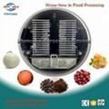 vacuum freeze dryer machine