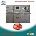 pilot vacuum freeze dryer