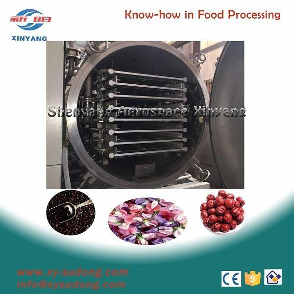 vacuum freeze dryer equipment - lg5 - xinyang (China