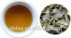 Loose green tea 9371 hot sale in France
