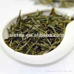 chinese famous green tea huangshan Maofeng