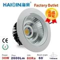 Haiqin LED COB spotlight 25W/30W white