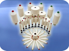 Ring Carded Cotton Yarn