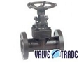 Forged steel flanged gate valve