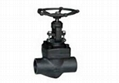 High Quality Forged Steel Globe Valve 1