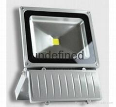 Custom outdoors LED floodlight