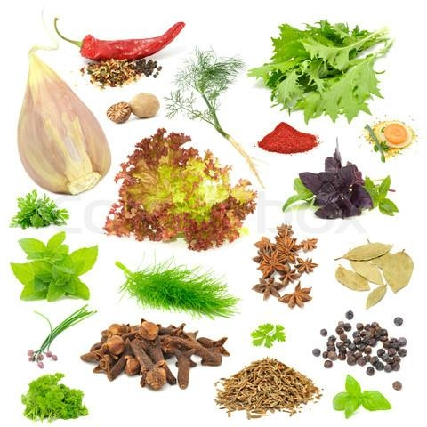 Thai spices exporter in Dried Ground or Powder Form  2