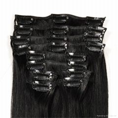 Double Drawn Clip in Hair Extension