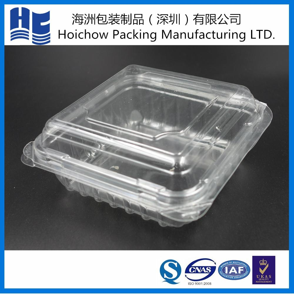 Blister disposable plastic food tray with clear lid for wholesale 1