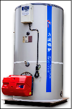 燃氣蒸汽鍋爐安裝 1