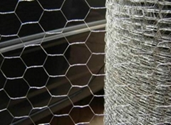 Environmental Hexagonal Wire Mesh/Gabion