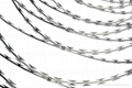 OEM protective razor barbed wire Chinese