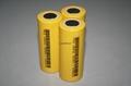 18650磷酸铁锂电池 2