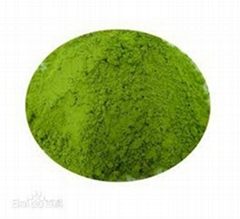 POWDERED DECAFFEINATED GREEN TEA EXTRACT