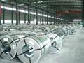 Hot dipped galvanized steel coil,PPGI 1