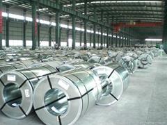 Hot dipped galvanized steel coil,PPGI