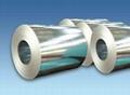 Hot dipped galvanized steel coil,PPGI 2
