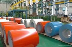 PPGI/PPGL Steel Coil