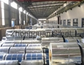 High Quality PPGI,PPGL Steel Coil