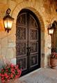 custom wrought iron doors