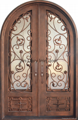 fancy iron entry door