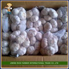 2017 Fresh Normal White Garlic 5.0cm