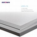 120lm/W CCT dimmable LED Panel light with meanwell driver 17