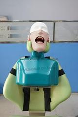 high quality Dental Training Head Simulator Manikin with Torso