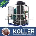 Koller Ice Machine TV100 10 Tons Tube Ice Making Machine