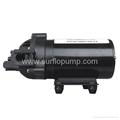 SURFLO high pressure electric agriculture sprayer water pump DC 12V 24V optional 3