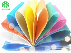 China supplier of 100% Polypropylene spunbond non woven fabric