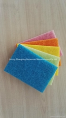 Five Color Scouring Pad