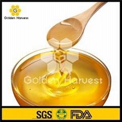 Jujube Honey