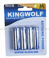 廠家供應批發5號手電筒遙控玩具電池批發