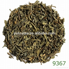 Spring time tea great taste hot selling good reputation the vert chine 9369