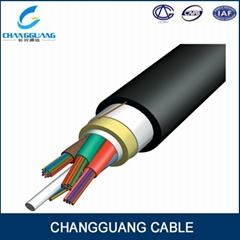 ADSS optical fiber cable  from China factory Changguang communication