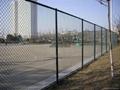 武汉体育运动场围网