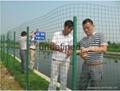 武汉荷兰养殖网围栏