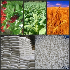 7783-20-2  nitrogen fertilizer