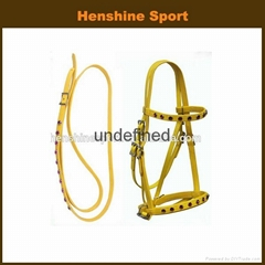 horse bridle and horse rein
