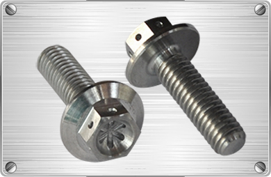 Titanium hex flange bolt for tube fitting or pipes  1