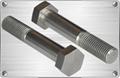 Titanium hexagonal bolt for pipe fitting